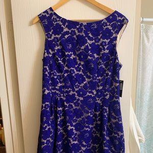 Lace royal blue cocktail dress- Size 14